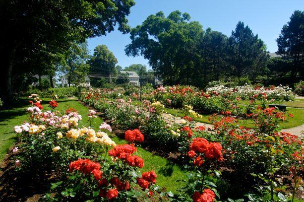 Annapolis Royal Historic Garden
