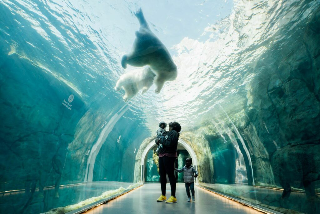 Assiniboine Park Zoo Credit JP Media Works Courtesyof Travel Manitoba