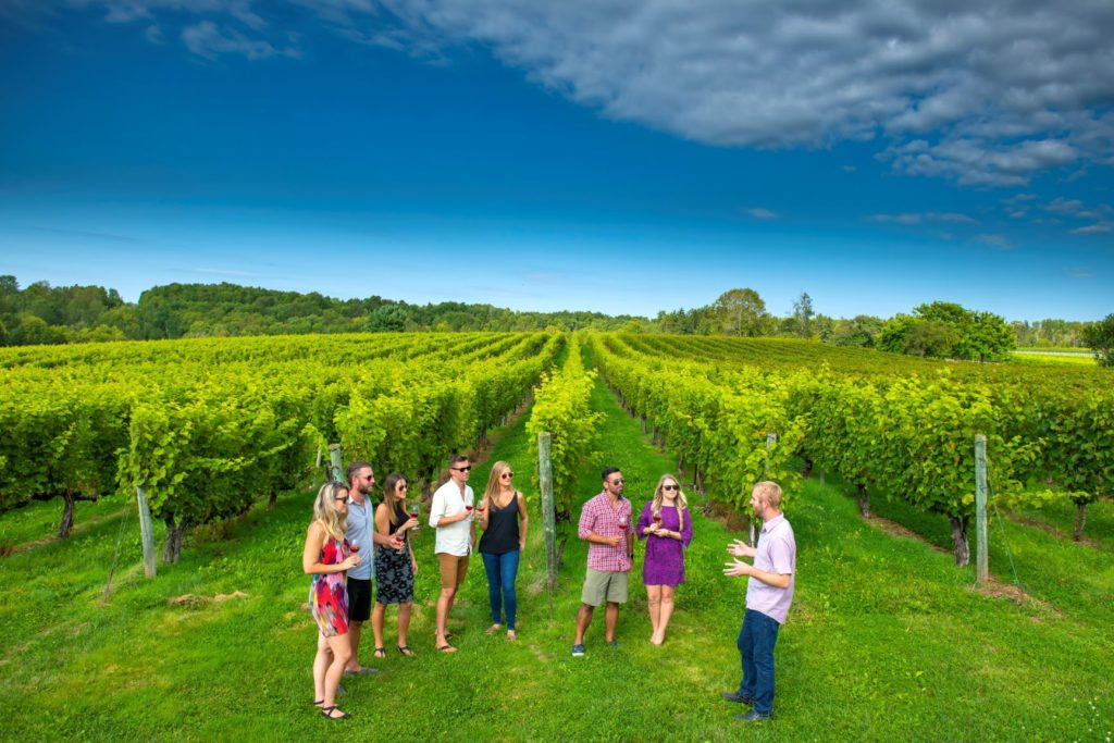 Avondale Sky Winery Annapolis Valley Wine Tours Nova Scotia