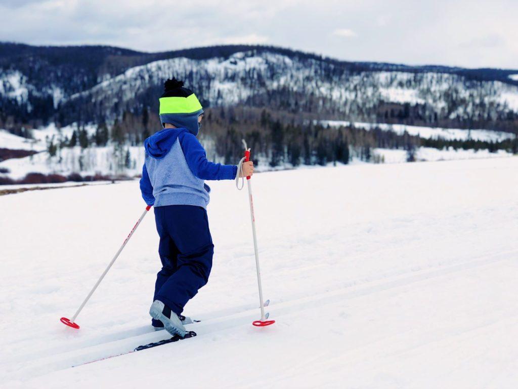 Clarenville Generic Cross Country Ski 1