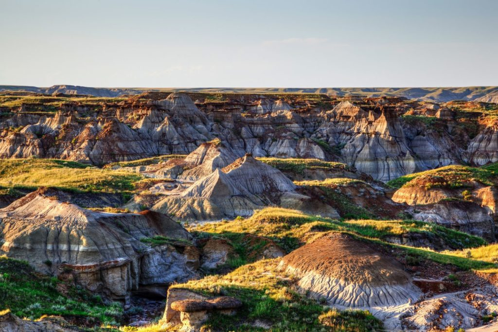 Dinosaur Provincial Park Southern Alberta Day Trips