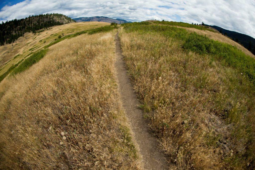 Ellison Park Trails Vernon Mountain Biking in BC