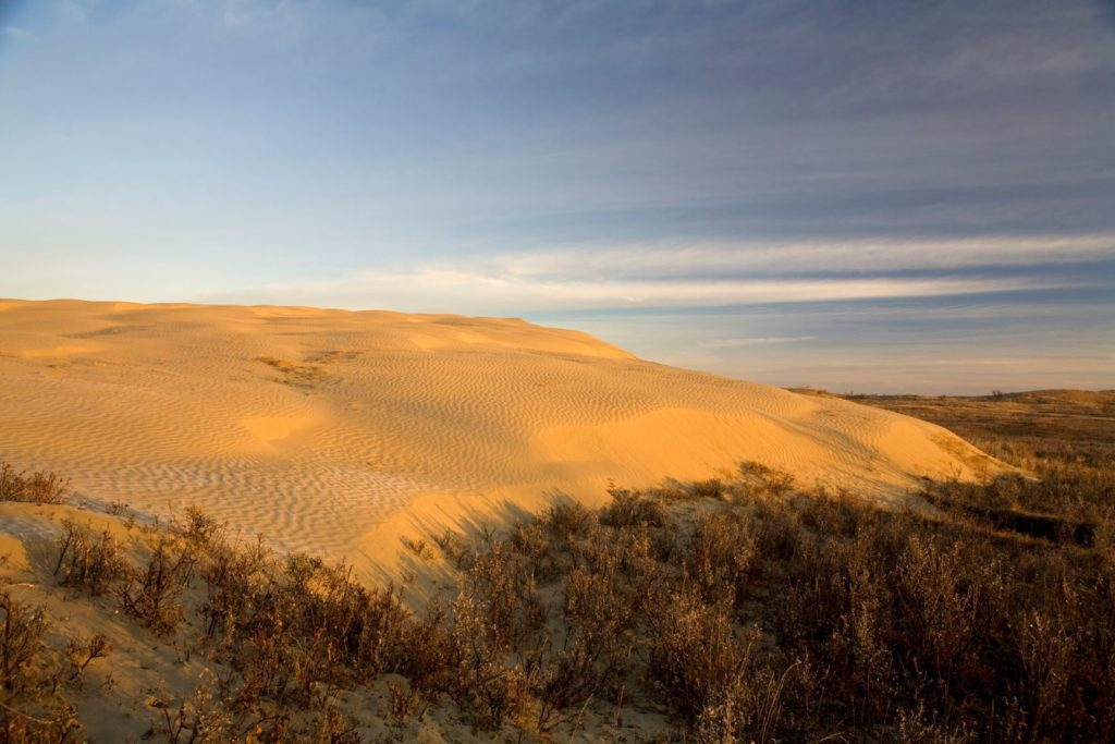 Great Sand Hills Unique Places in Saskatchewan