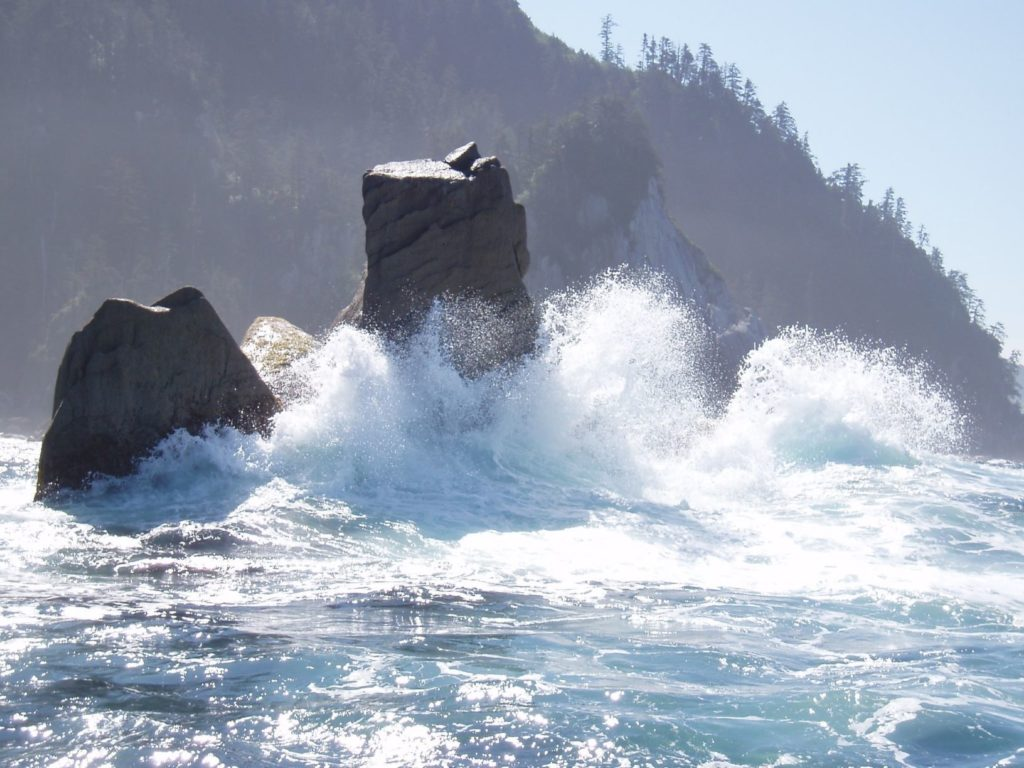 Haida Gwaii Surfing British Columbia