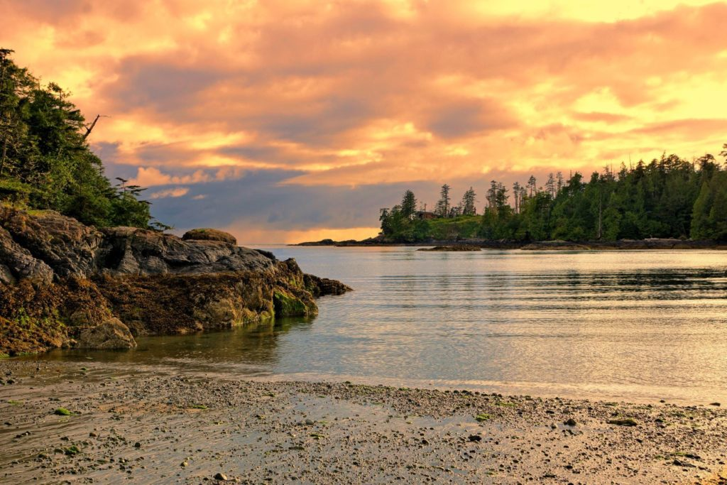 Pacific Rim National Park Vancouver Island