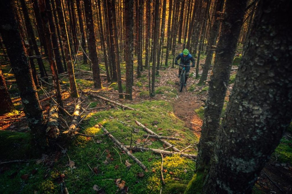 Rossland Generic Mountain Biking in BC