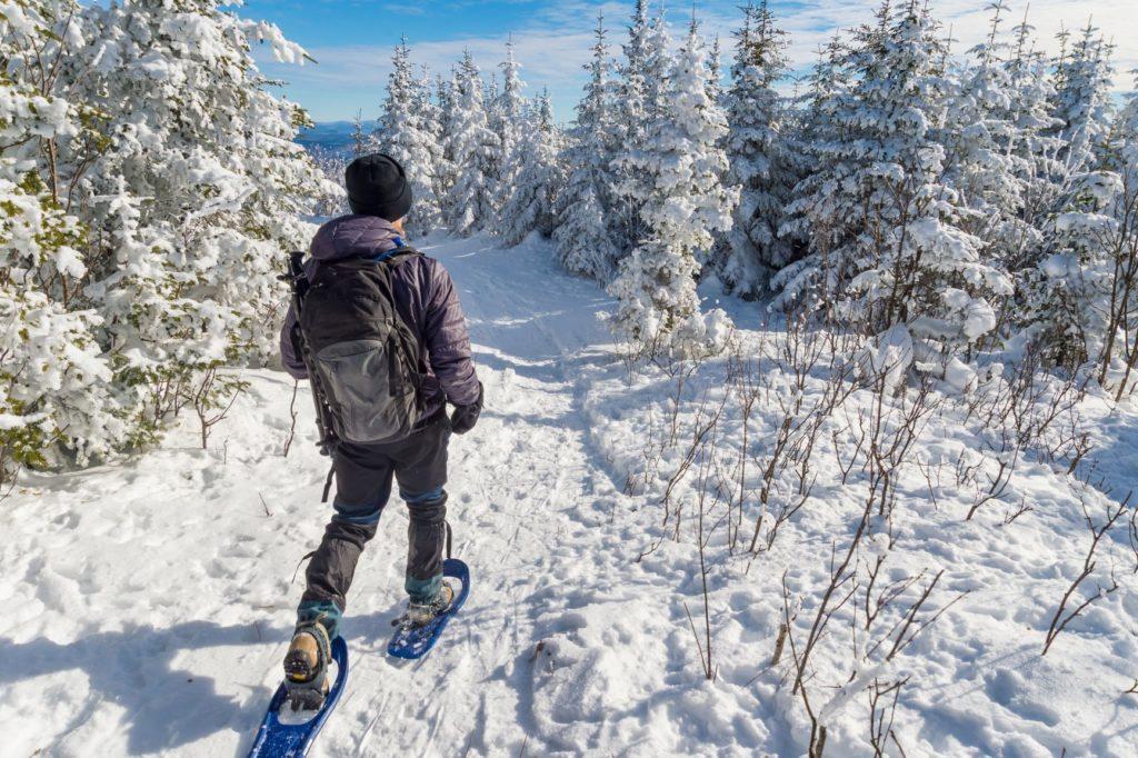 Snowshoeing Image 2