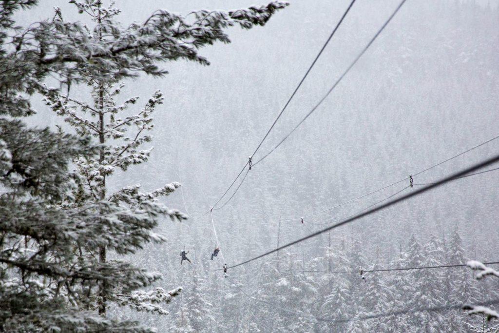 Ziplinning at Marble Mountain stock 1