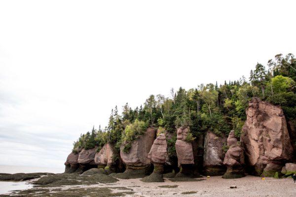 Hopewell Rocks Bay of Fundy