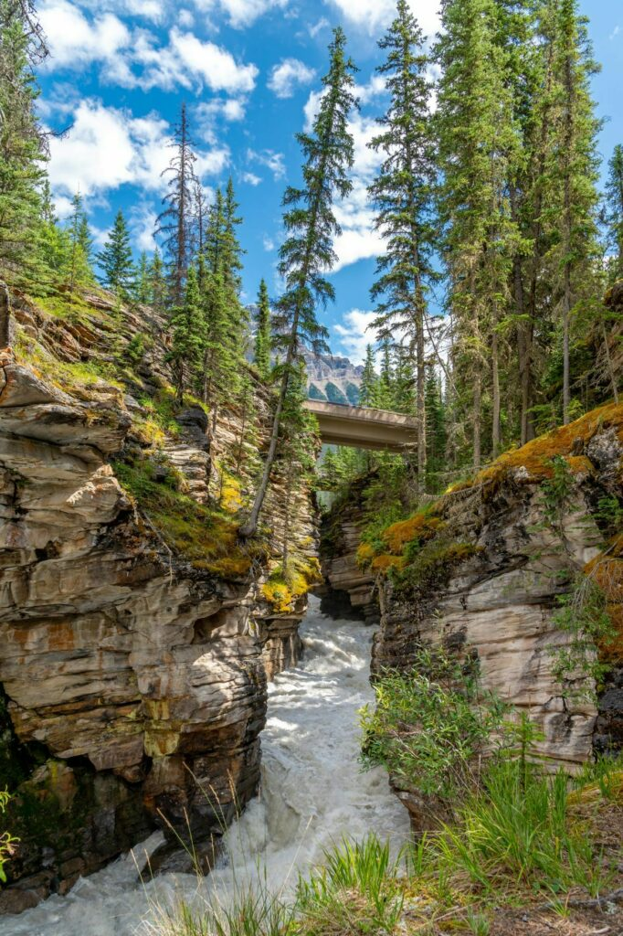 Jasper Hiking Waterfall